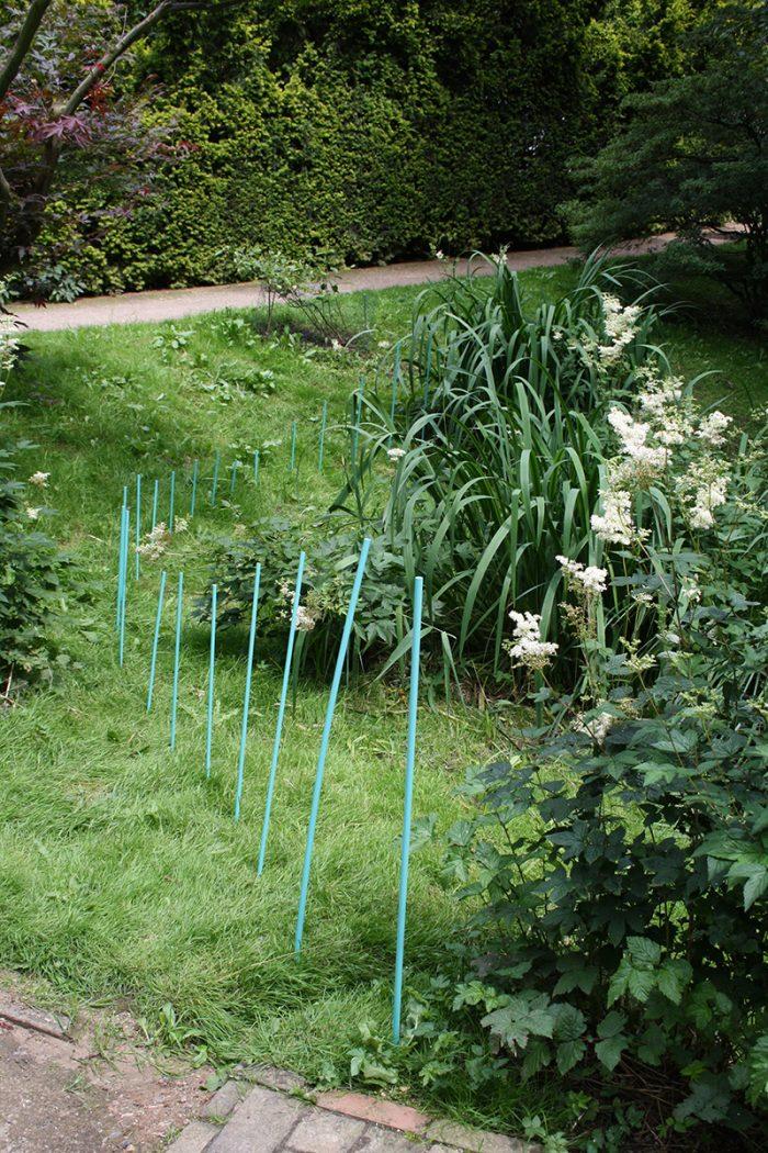 Intervention im Alten Botanischen Garten